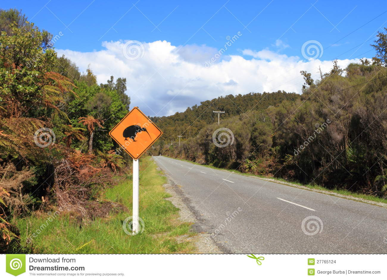 Signe de croisement de kiwi