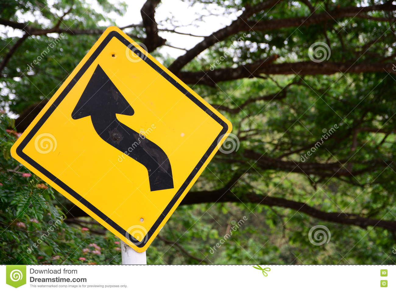 Signs curve