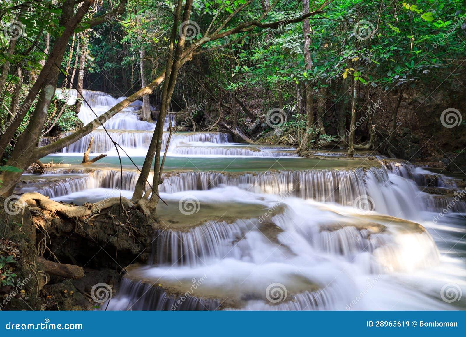 Siklawa krajobraz w głębokim lesie