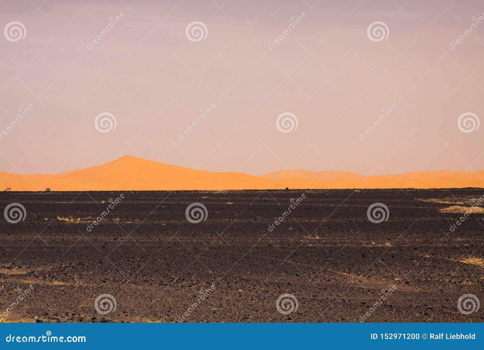 Sikt över ändlöst bränt stenigt land för svart plan avfalls på guld- sanddyn och suddig dyster himmel, erg Chebbi, Marocko