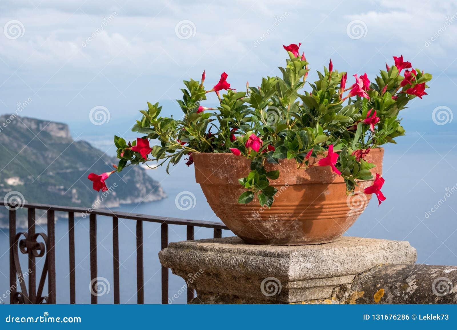 Sikt av bunken av blommor och medelhavet från terrassen av oändligheten på trädgårdarna av villan Cimbrone, Ravello, Italien