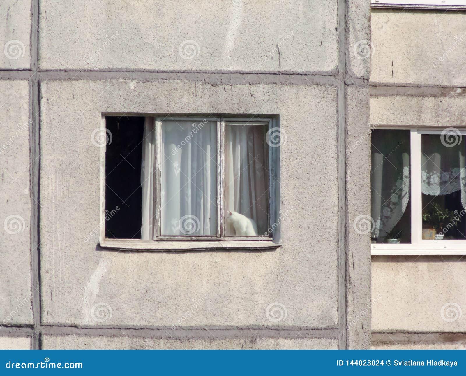 Sikt av de angränsande fönstren av mång--våning en bostads- byggnad från förfallna paneler