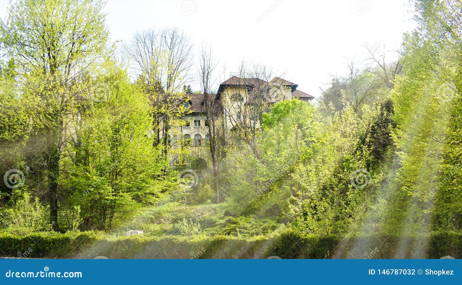 Sikt av det stora övergav hotellet med gammal arkitektur som är hiddent i skogen i en solig vårdag