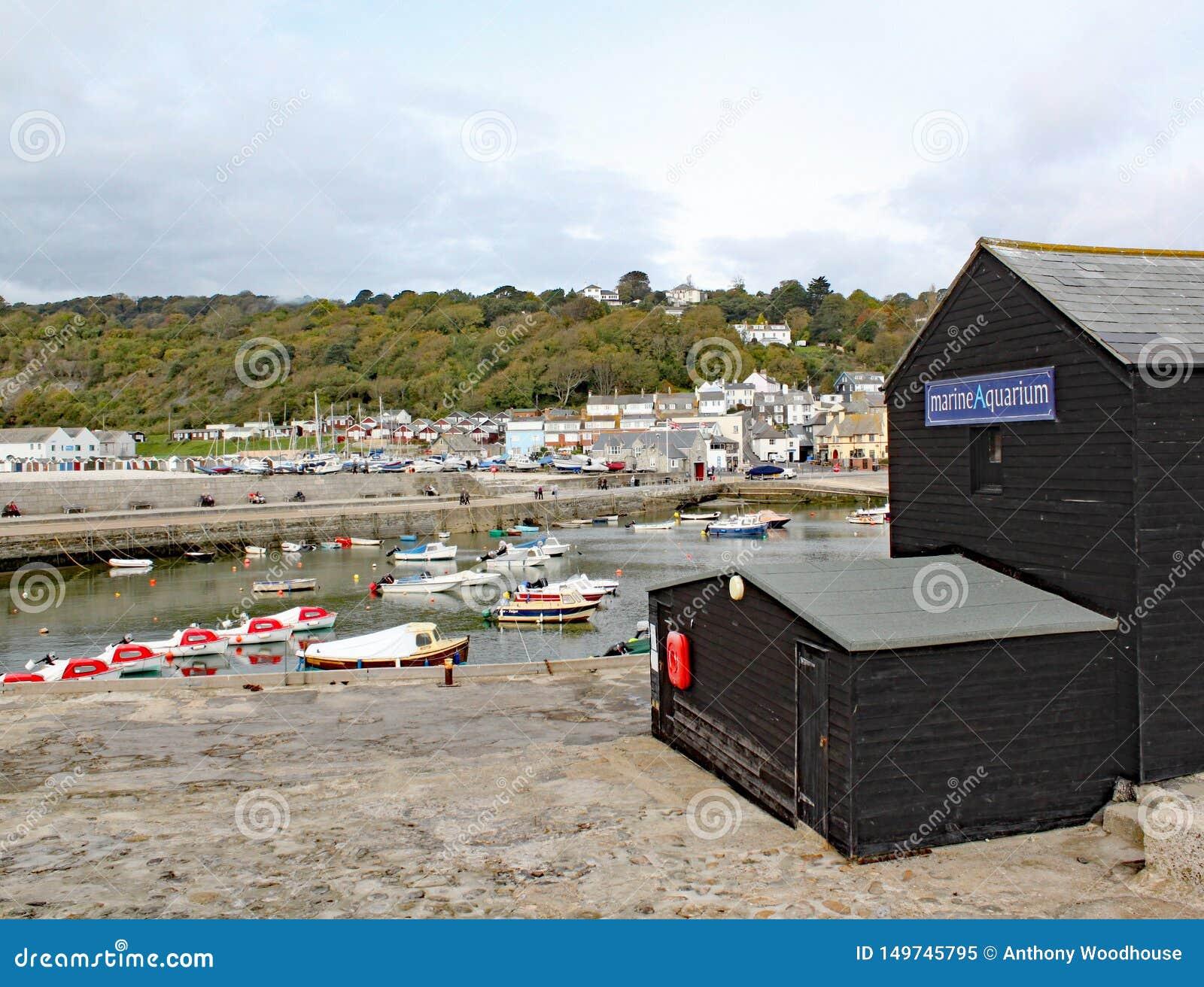 Sikt av hamnen på Lyme Regis som beskådas från slutet av Cobben Marine Aquarium är i förgrunden