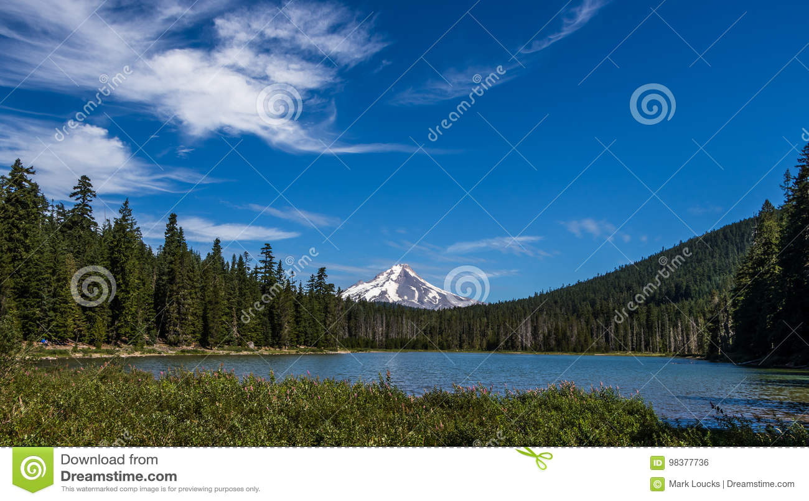 Sikt av monteringshuven från groda sjön Oregon