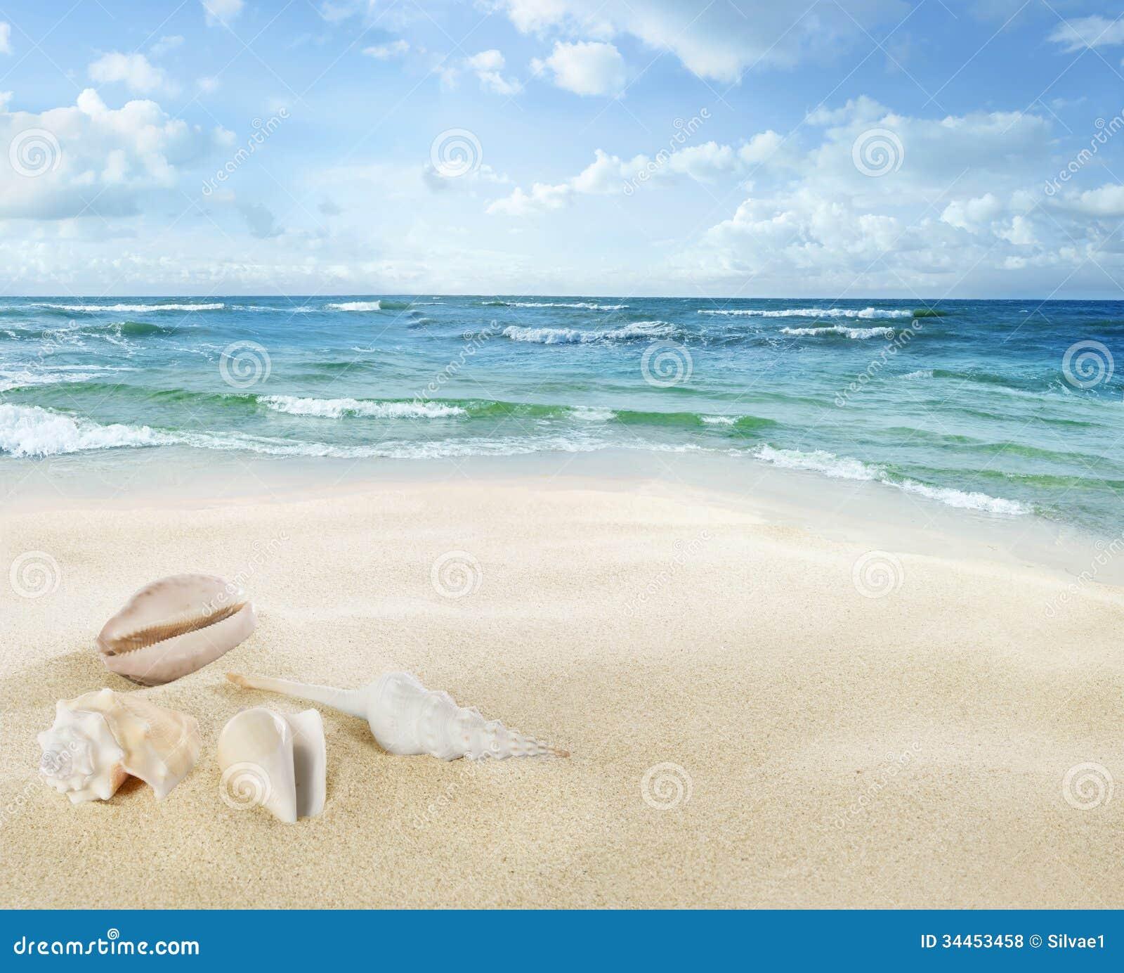 Sikt av seascape