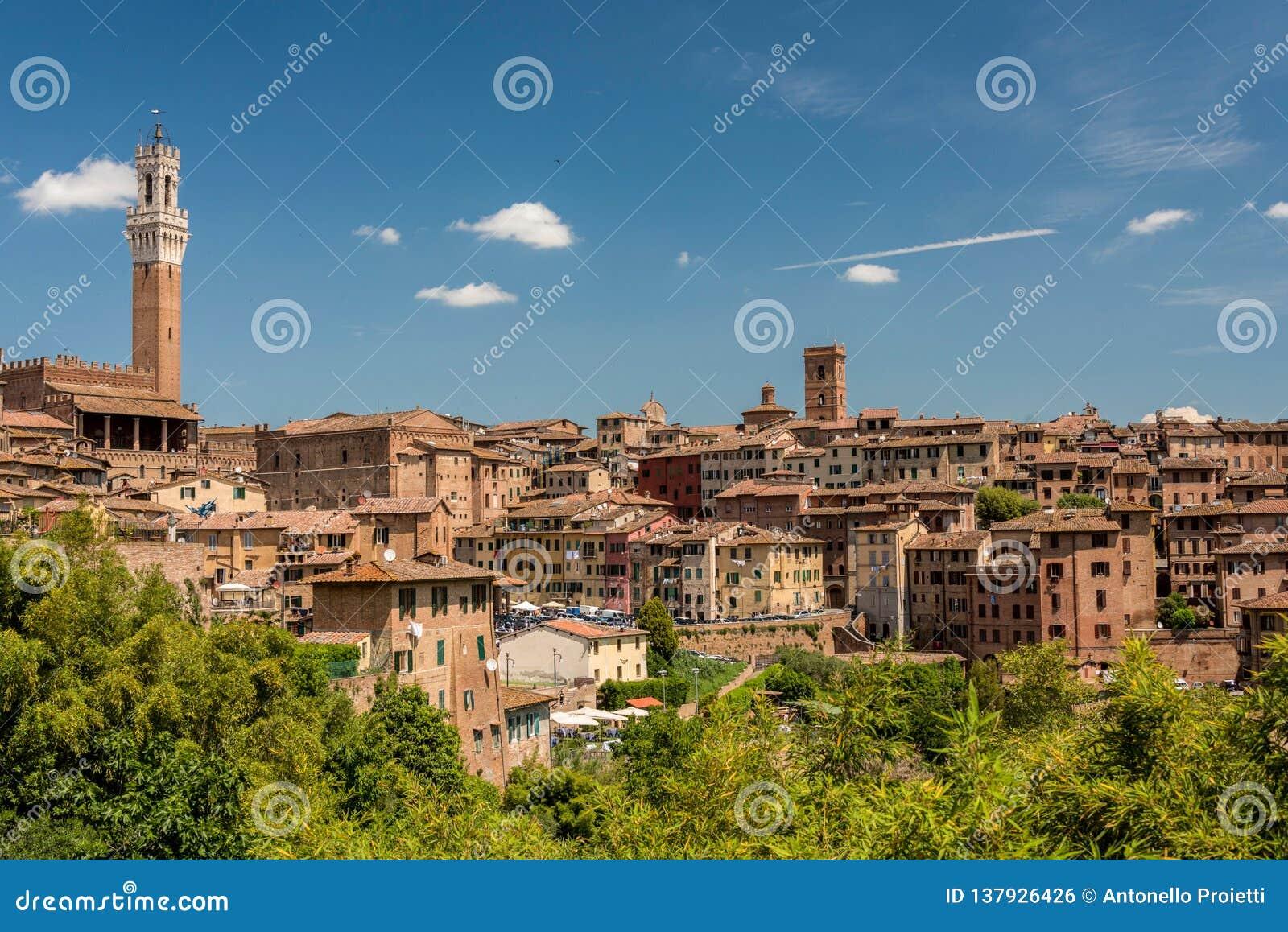 Sikt av Siena från söder med det Mangia tornet