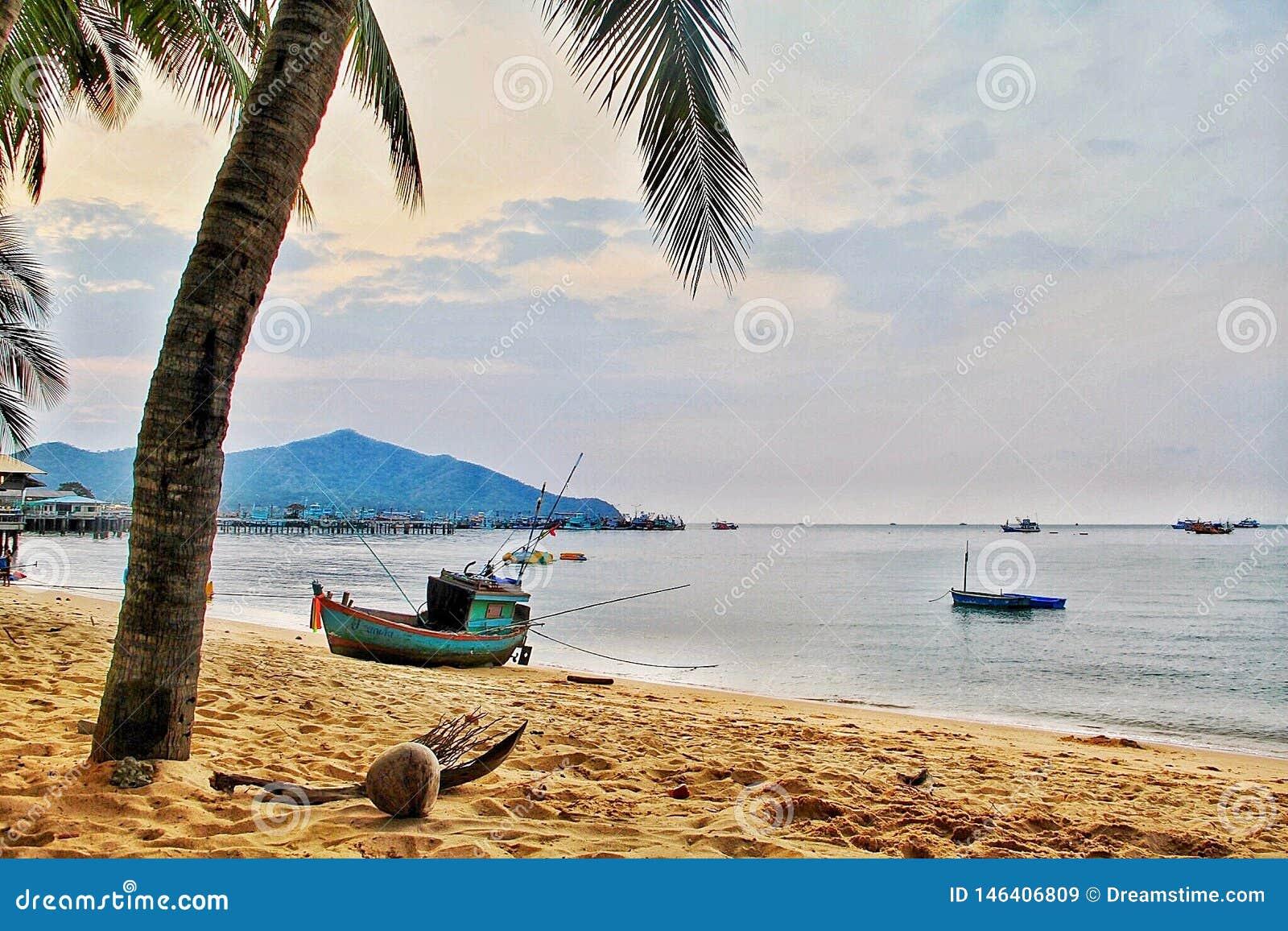 Sikt för Beachcoconut fiskebåthimmel