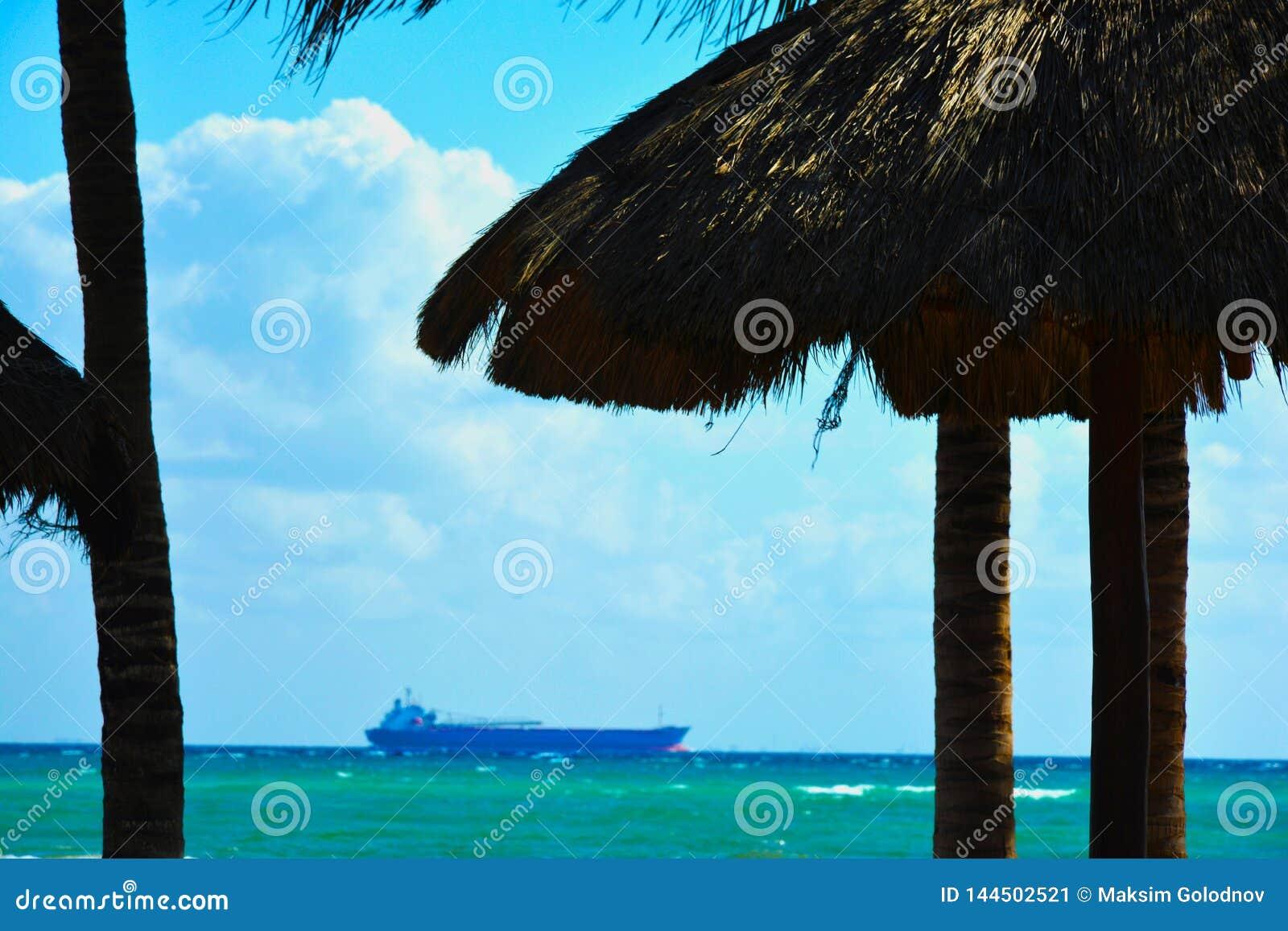 Sikt från stranden till lastfartyget