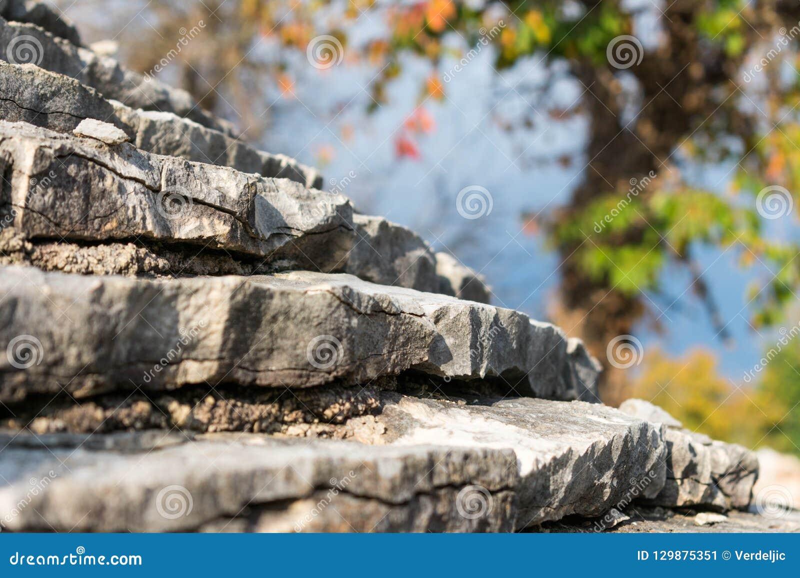 Sikten av ett tak av ett traditionellt stenar huset och det färgrika trädet i höstfärger i bakgrunden, den Istria regionen, Kroat