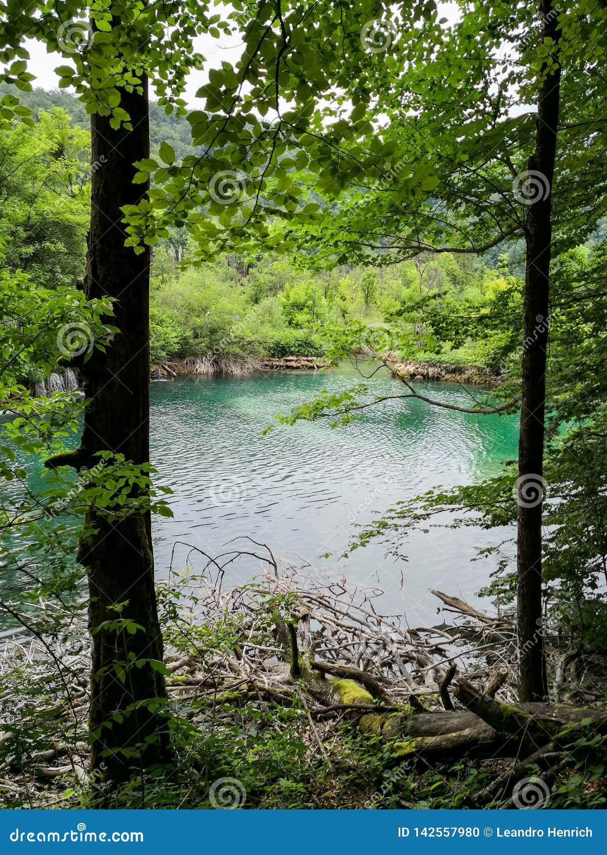 Sikten av naturliga Plitvice sjöar parkerar