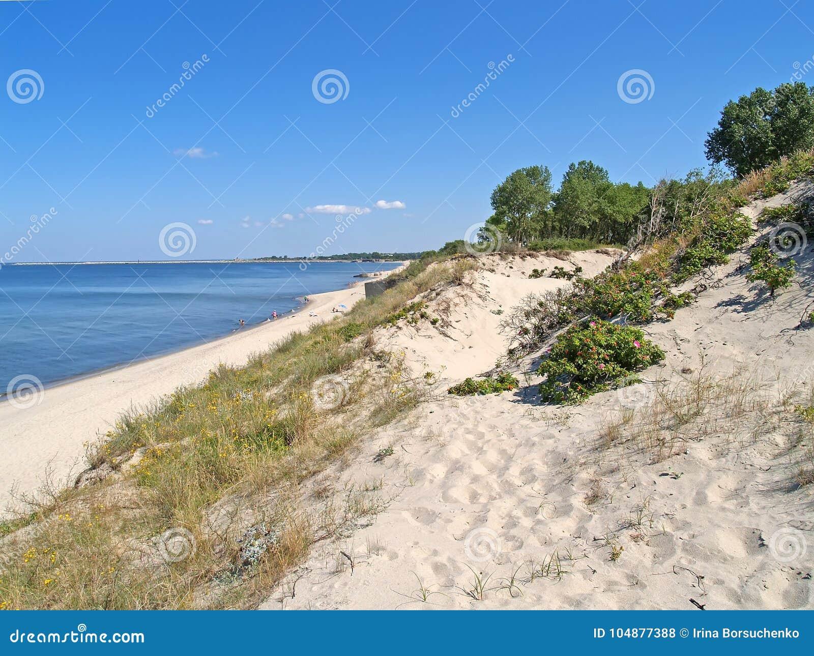 Sikten av sandiga dyn och kusten av Vistula spottar blå solig russia för tak för daghuskaliningrad region sommar