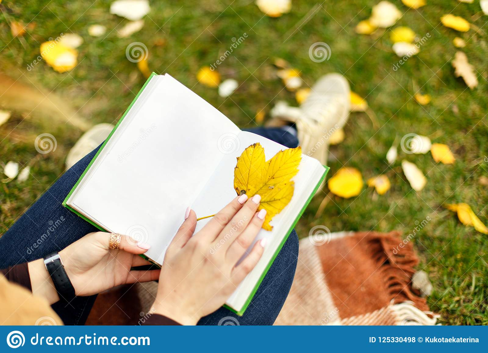 Sikten från ovannämnt på kvinnahänder med den öppna boken genom att använda yeelowbladet som bokmärken för en bok, i höst parkera