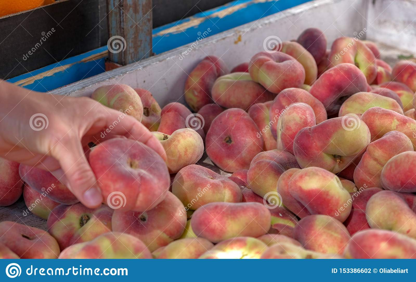 Sikten på den nya mogna saftiga saturn persikan från bönderna marknadsför