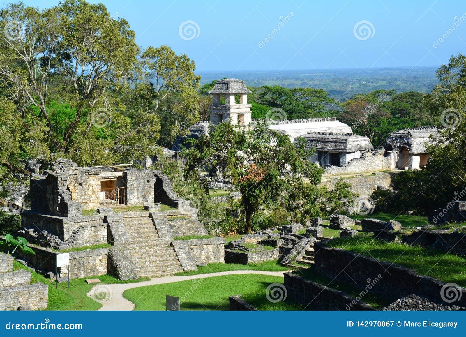 Sikten Palenque fördärvar Chiapas Mexico