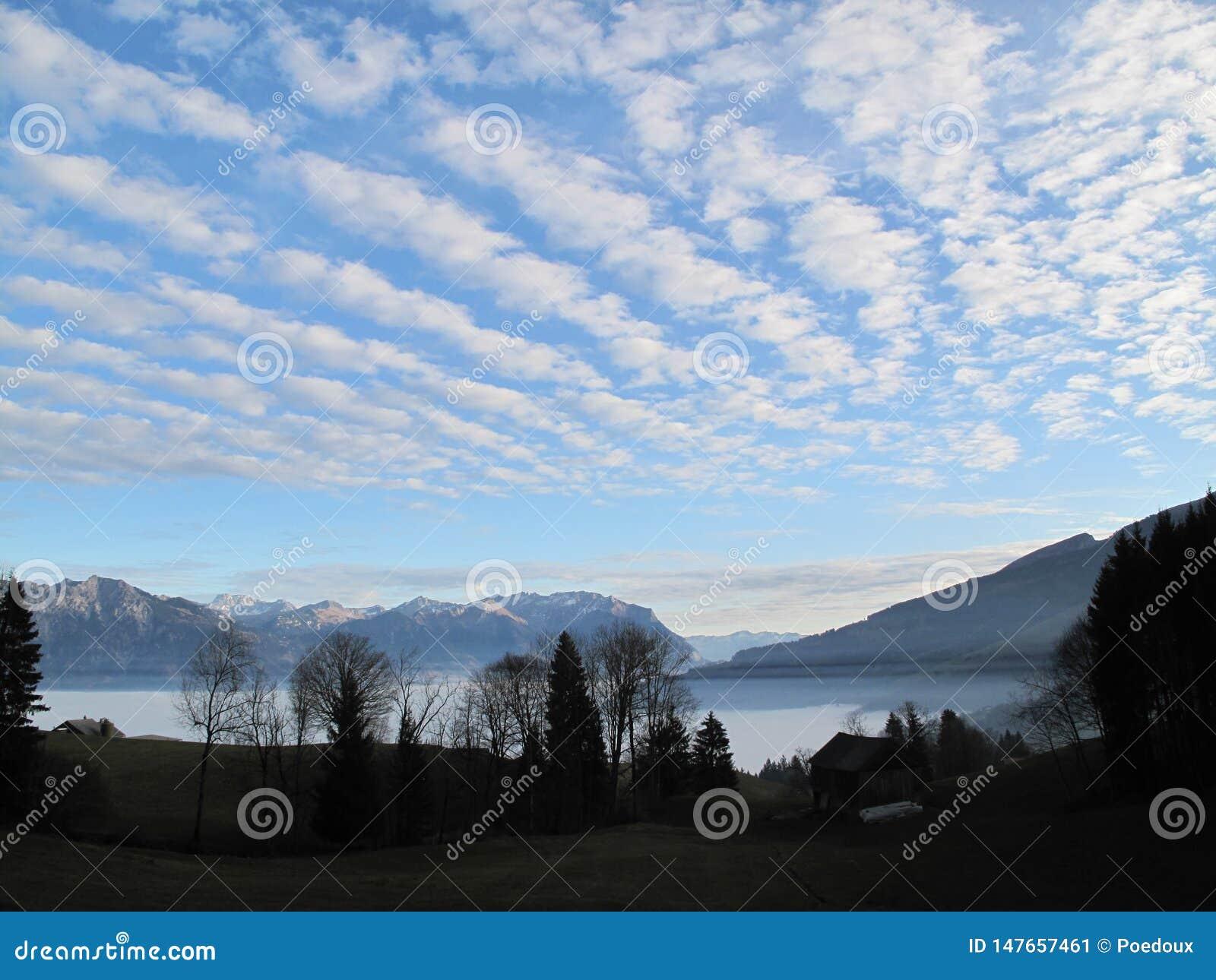 Silhouet en overzees van mist