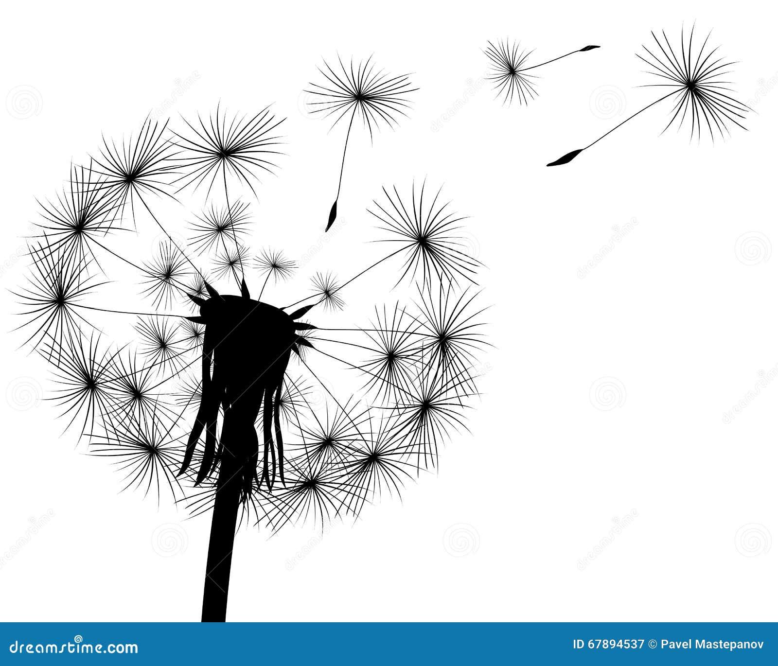 Silhouet met vliegende paardebloemknoppen