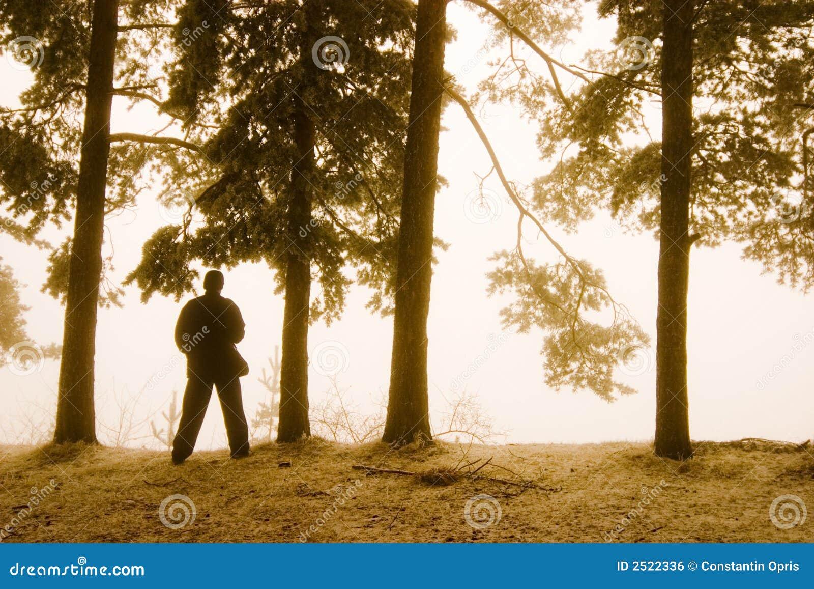 Silhouet van de mens in bos