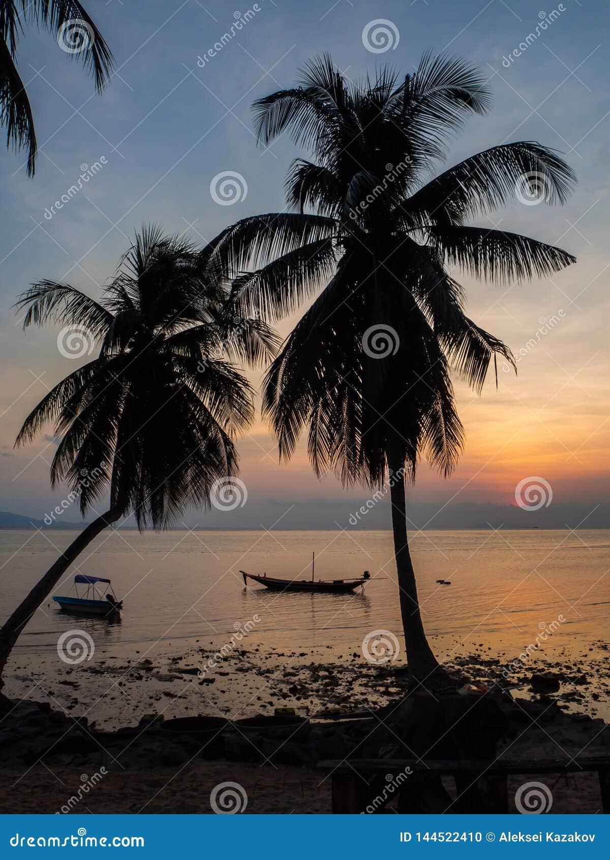 Silhouet van een boot en palmen tegen de het plaatsen zon met wolken