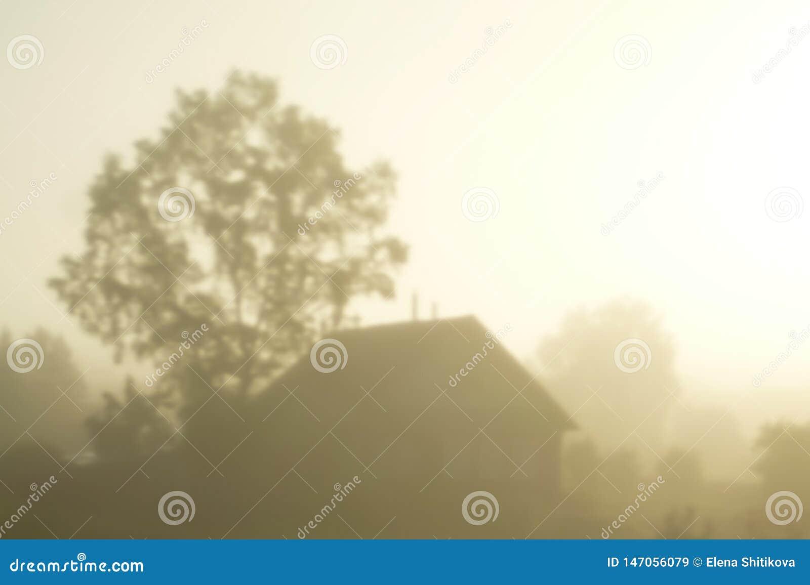 Silhouet van een dorpshuis in de mist