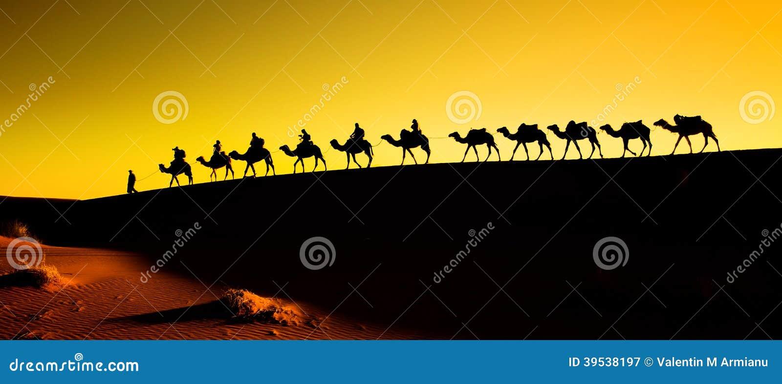 Silhouet van een kameelcaravan