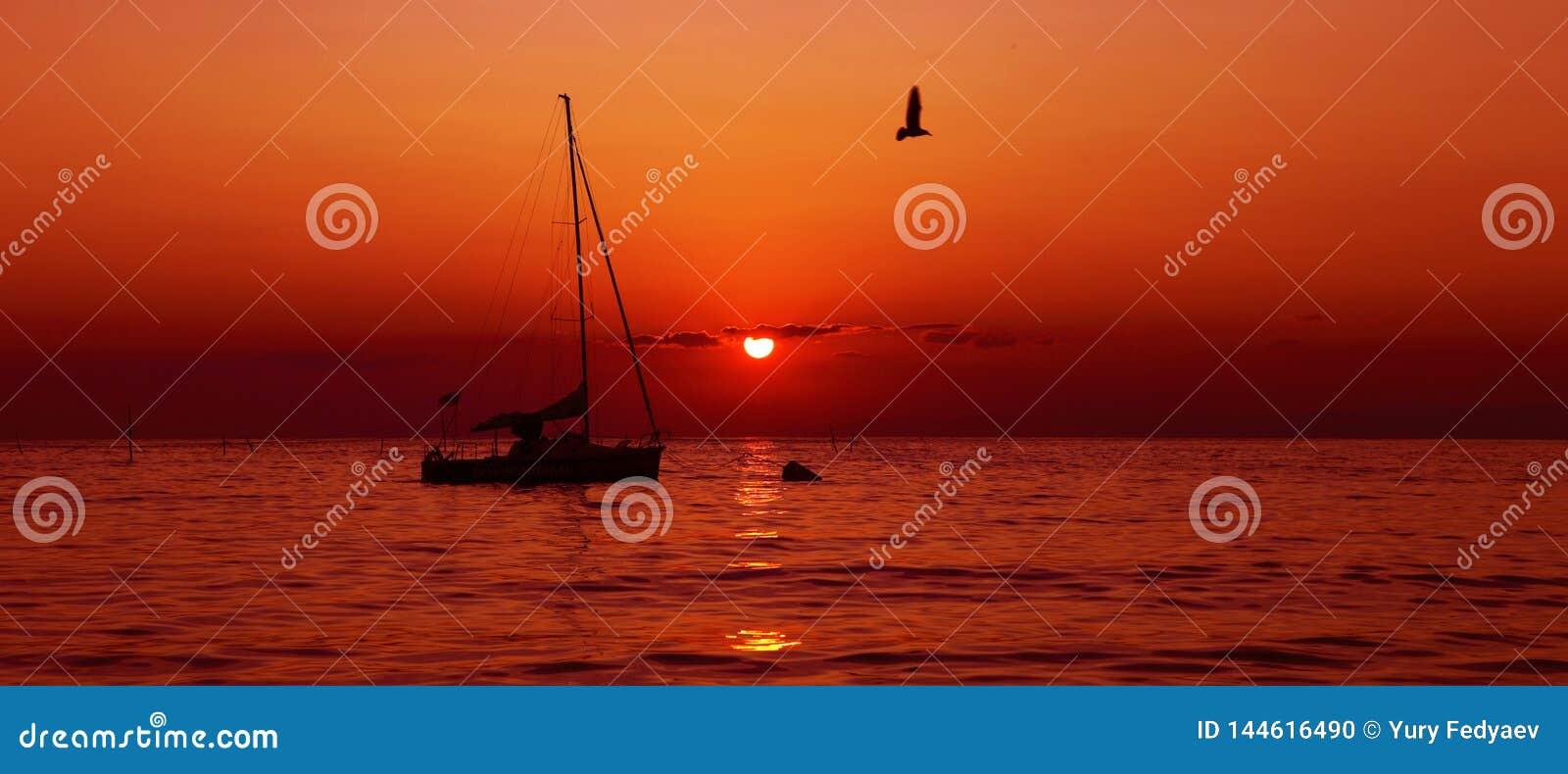 Silhouet van een zeilboot tussen de zonsopgang onder een rode hemel met vliegende zeemeeuwen