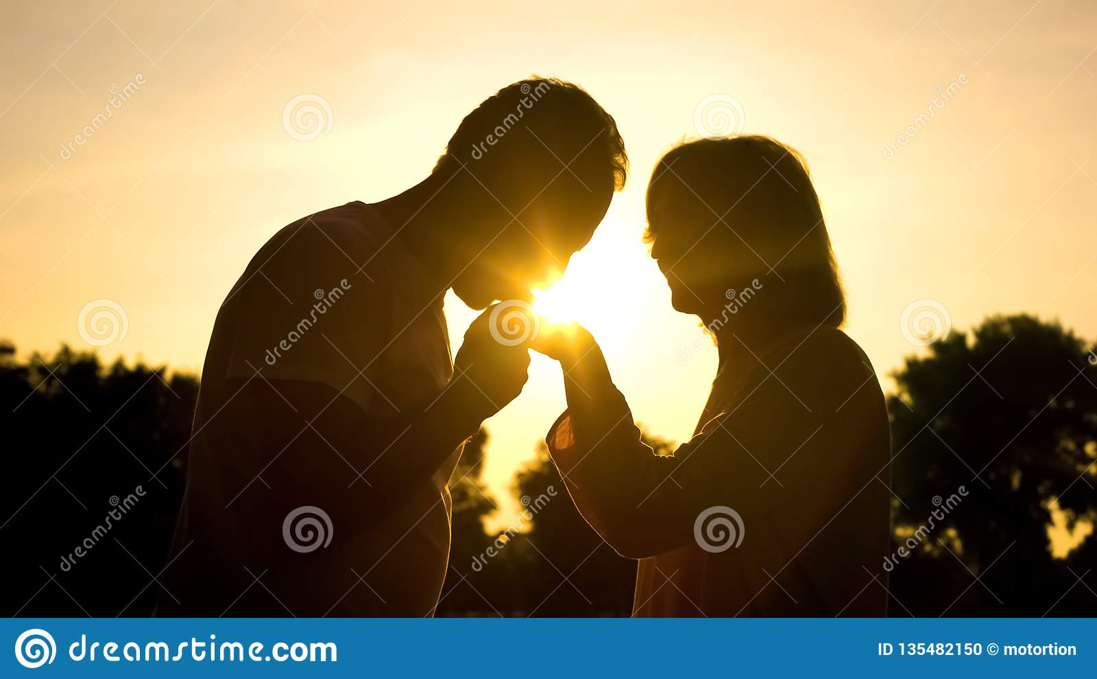 Silhouet van heer het kussen de hand van de vrouw, hoger paar in Romaanse liefde,