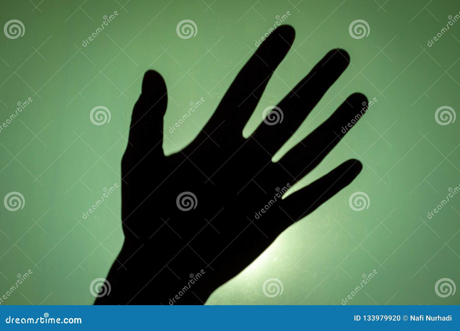 Silhouet van menselijke hand met open palm, Aziatisch wijfje