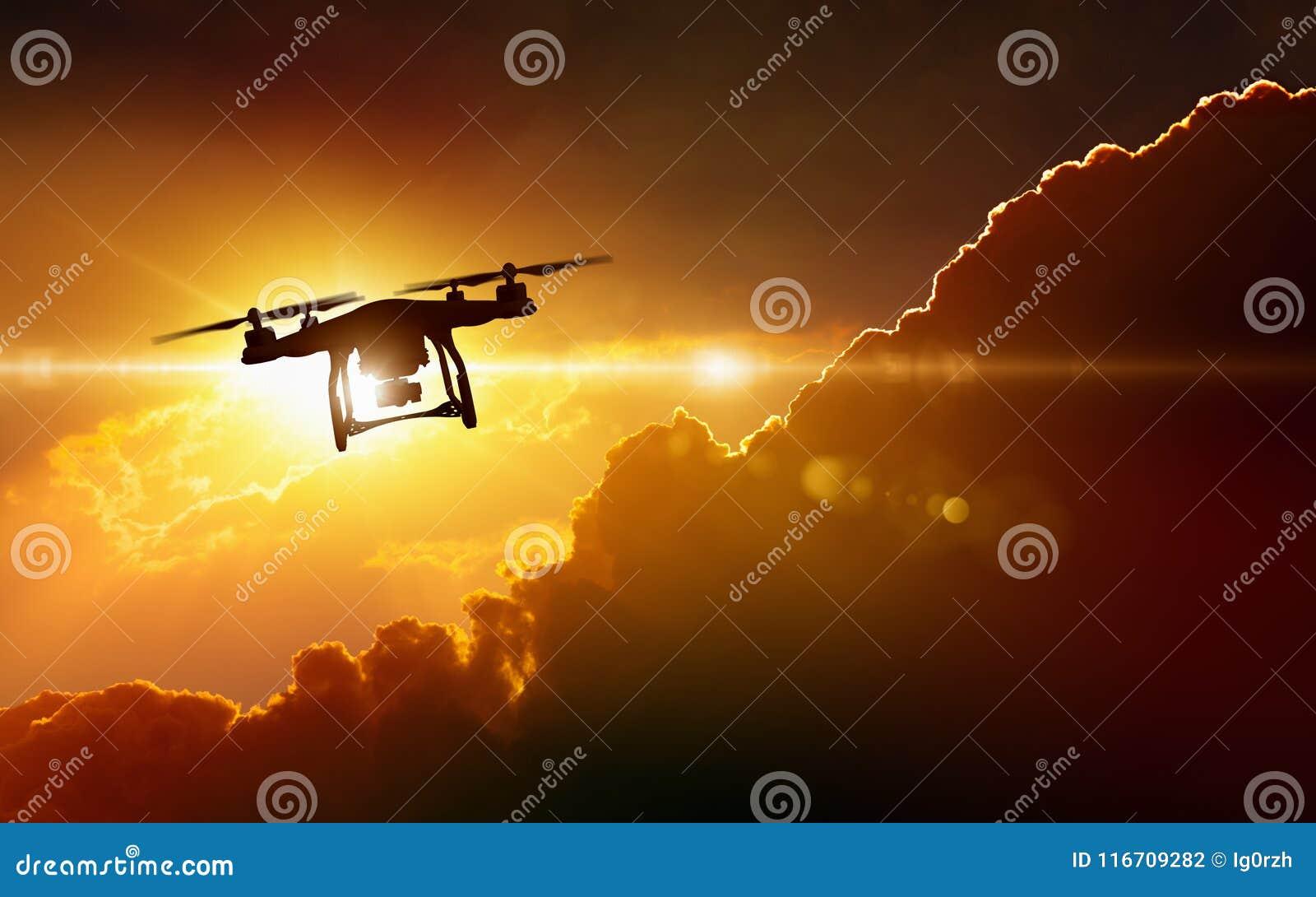 Silhouet van vliegende hommel in gloeiende rode zonsonderganghemel