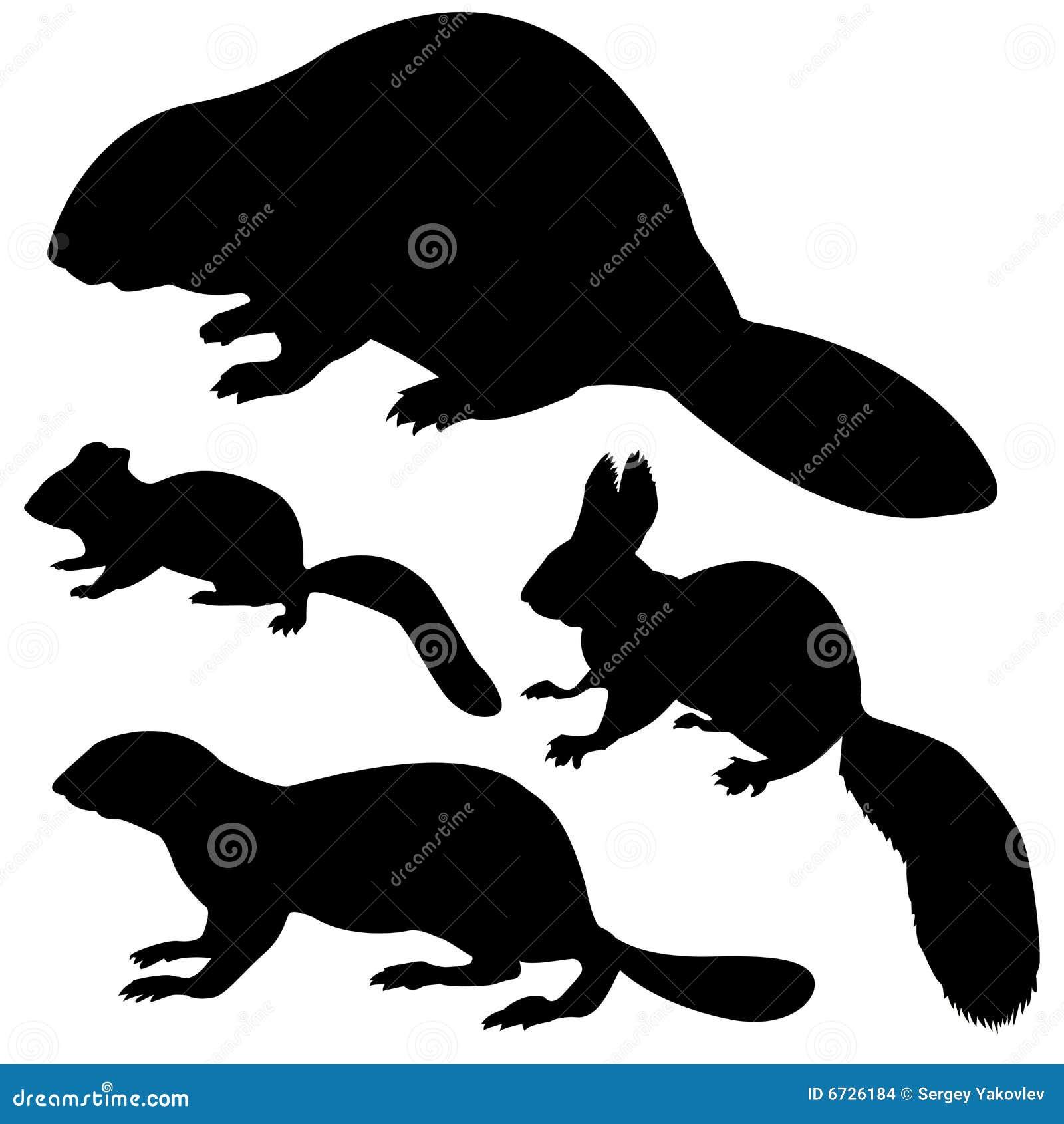 Silhouette animale