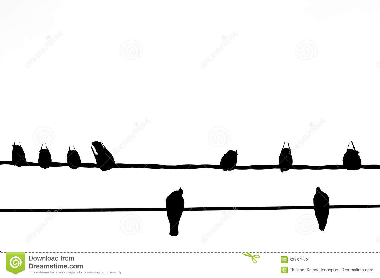 Silhouette Of Bird On The Electric Wire Cable On White Stock Image ...