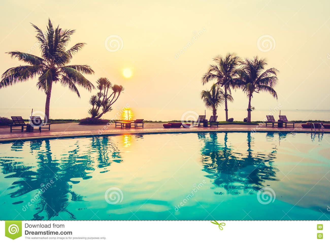 Silhouette Coconut Palm Tree With Swimming Pool Stock Image 68814649