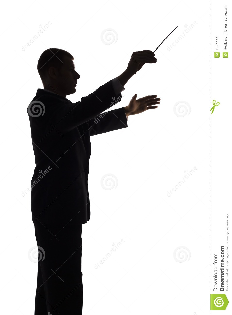 silhouette of conductor stock photo image of adviser