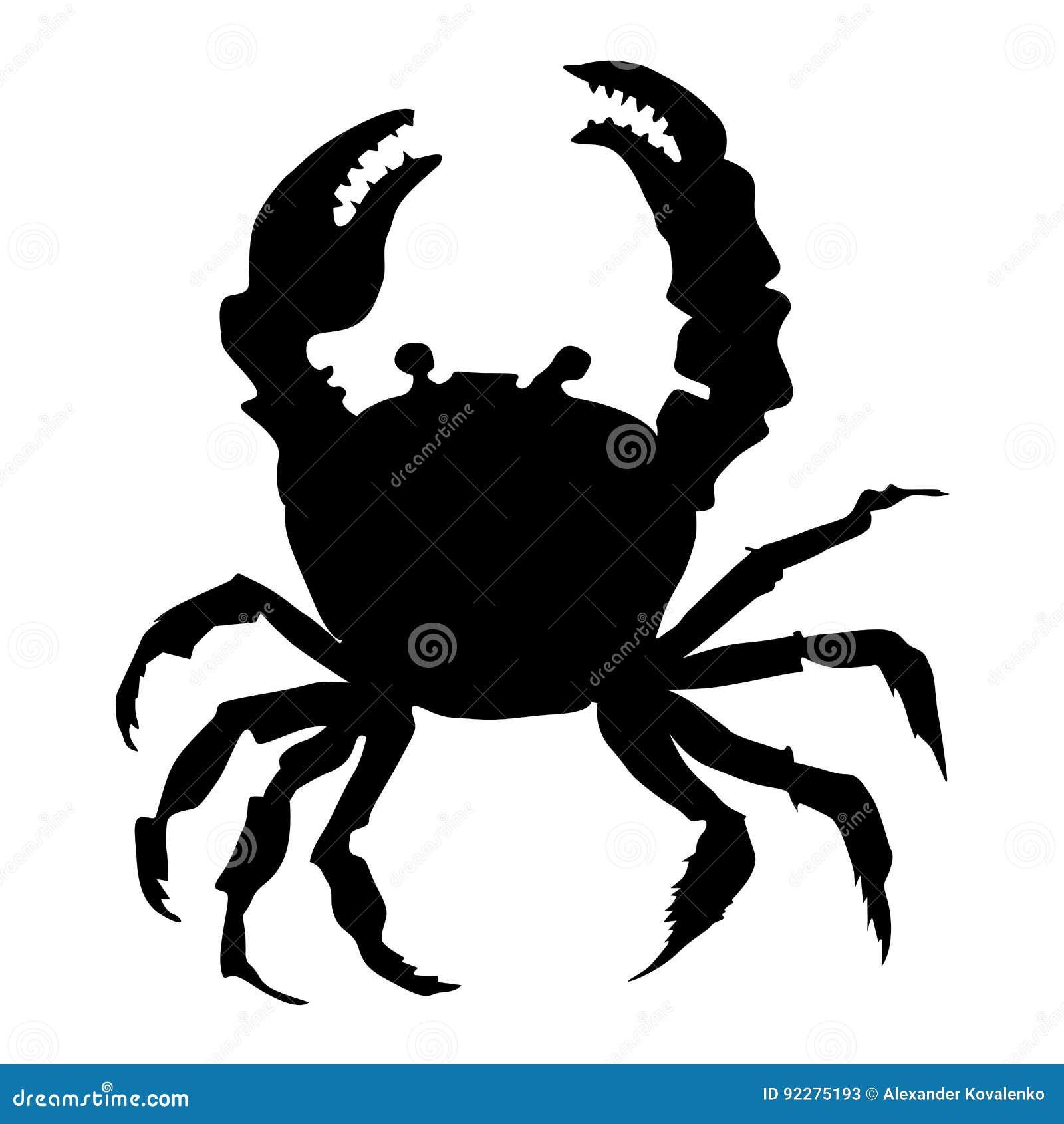 Silhouette of crab stock illustration  Illustration of life