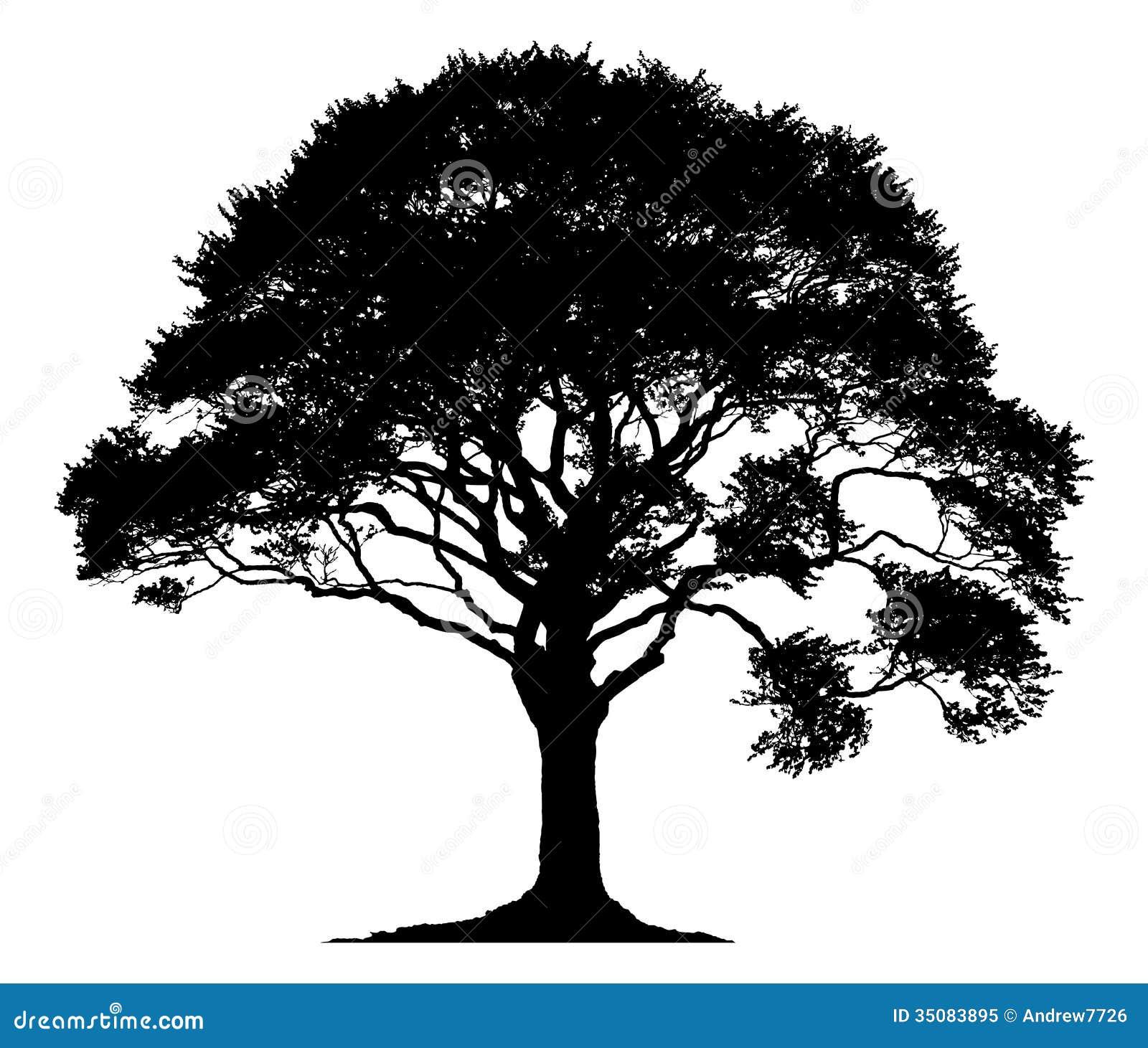 silhouette d 39 un arbre solitaire photo libre de droits image 35083895. Black Bedroom Furniture Sets. Home Design Ideas