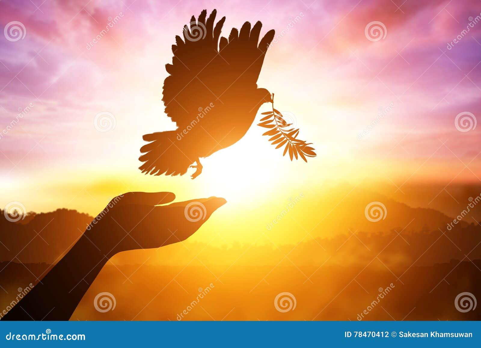 Silhouette d un désir de main à la colombe