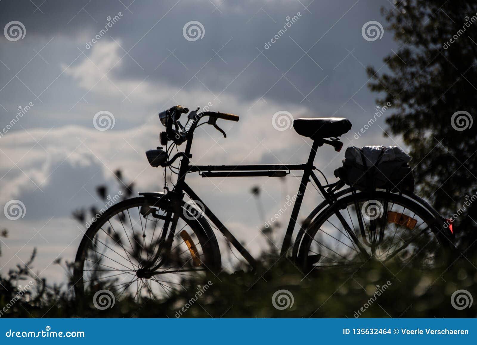 Silhouette d un vélo d hommes