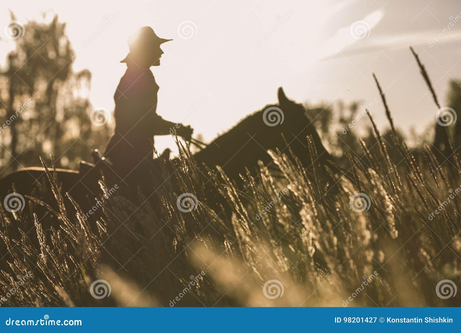Silhouette d une femme montant un cheval - coucher du soleil ou lever de soleil