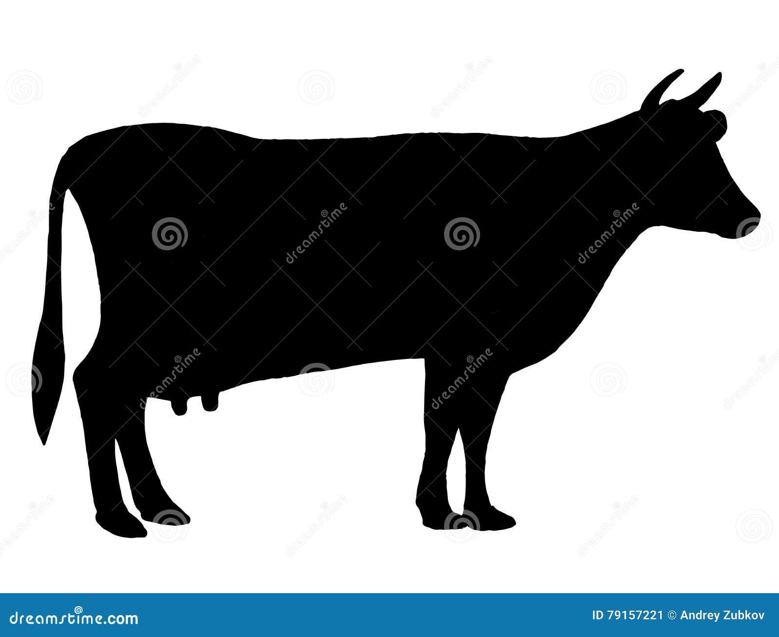 Silhouette d 39 une vache b tail circuit ferme taureau dessin noir et blanc la main illustration - Dessin d une vache ...