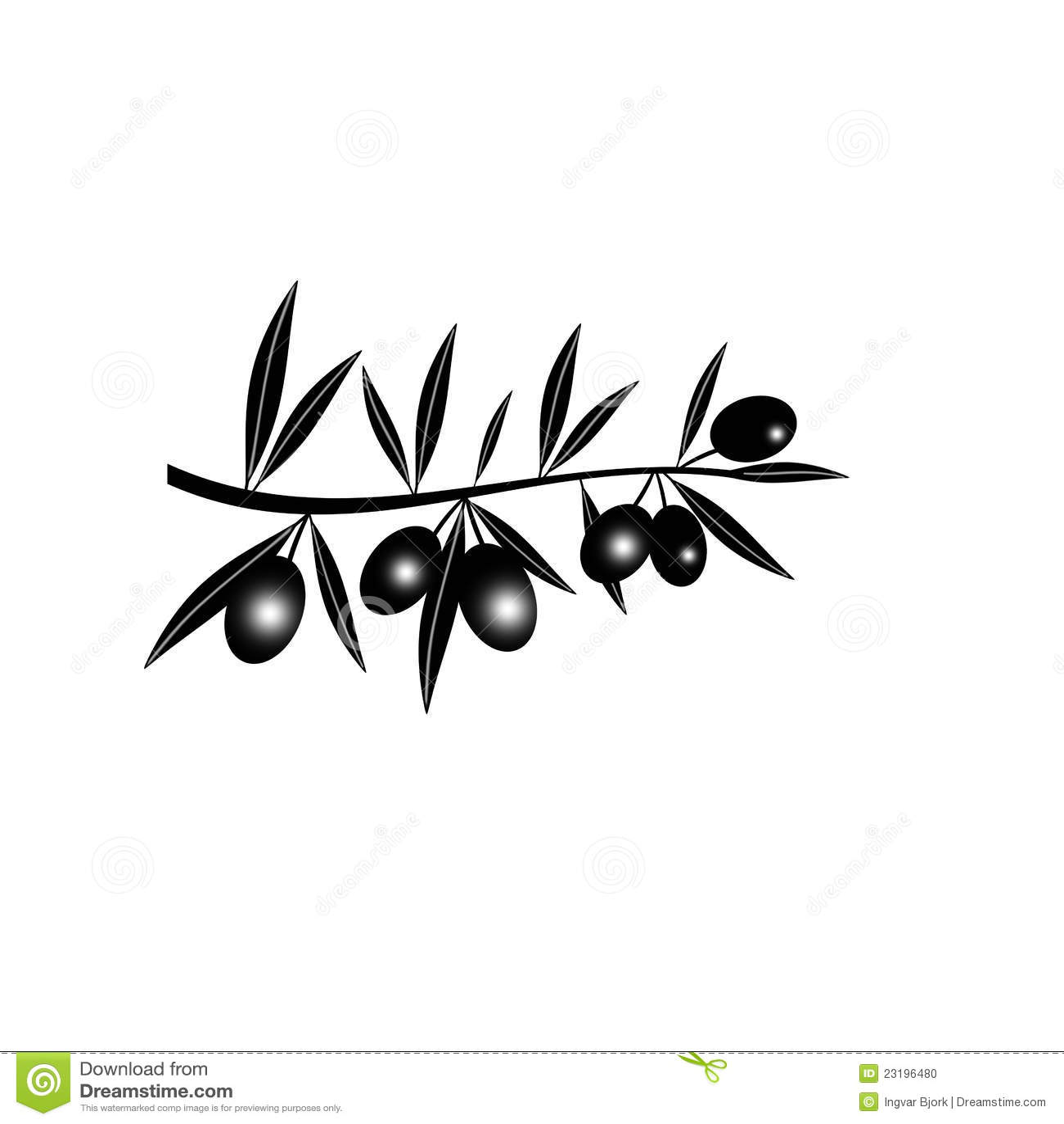 silhouette de branche d 39 olivier noire photo stock image 23196480. Black Bedroom Furniture Sets. Home Design Ideas