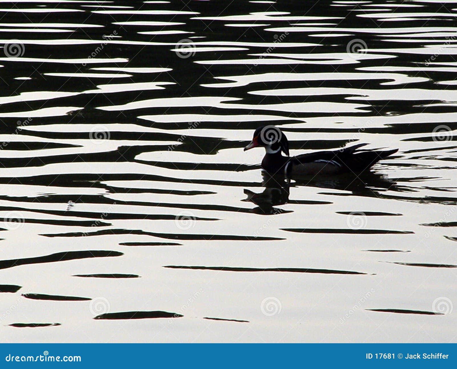 Silhouette de canard en bois