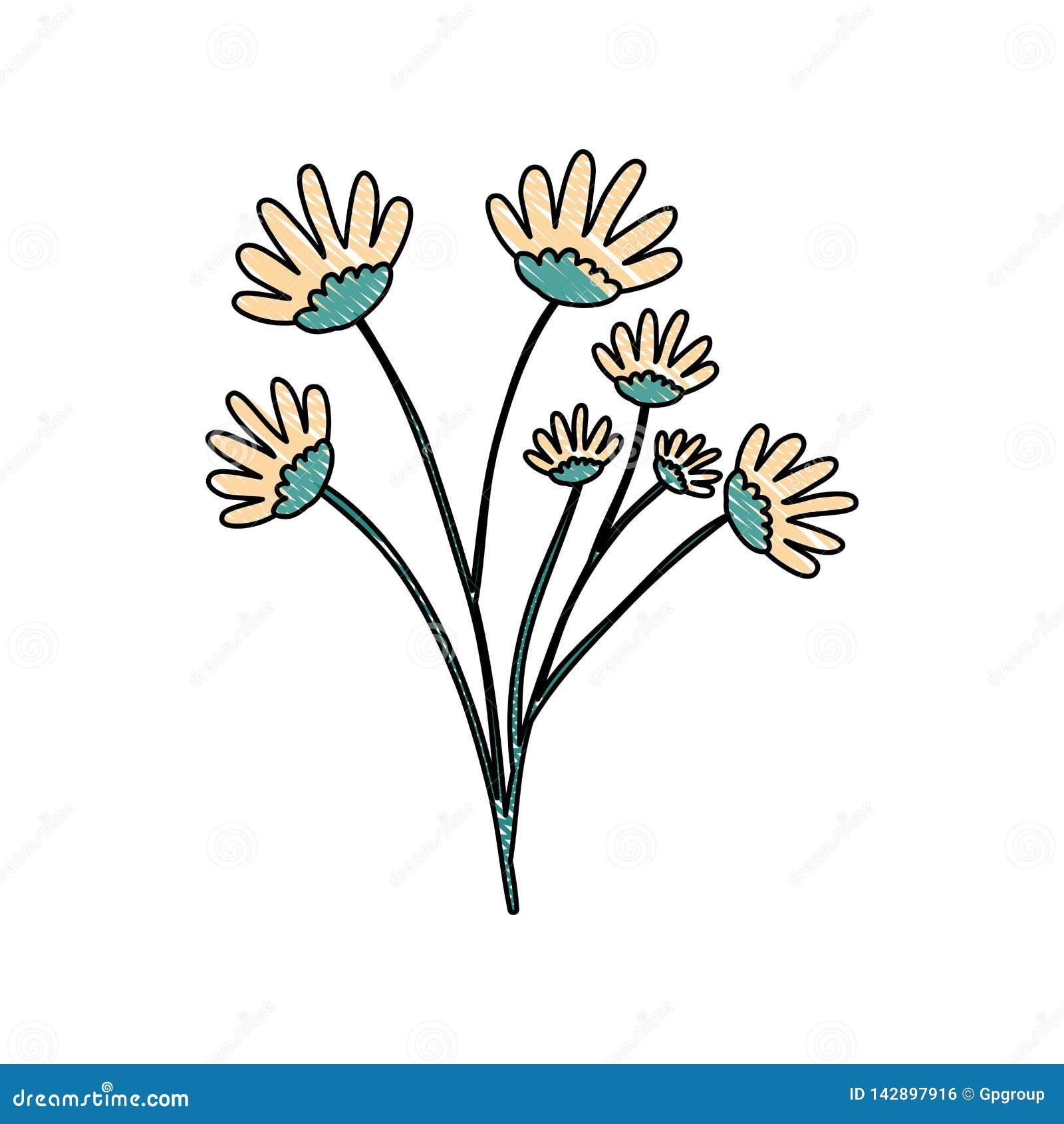 Silhouette De Crayon De Bouquet Jaune De Fleur De Marguerite