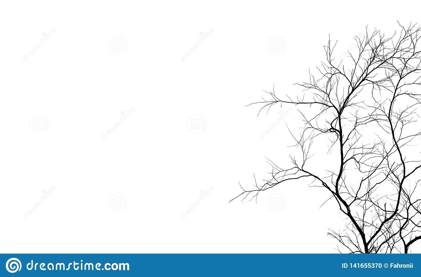 Silhouette Dead Tree And Branch Isolated On White Background Black