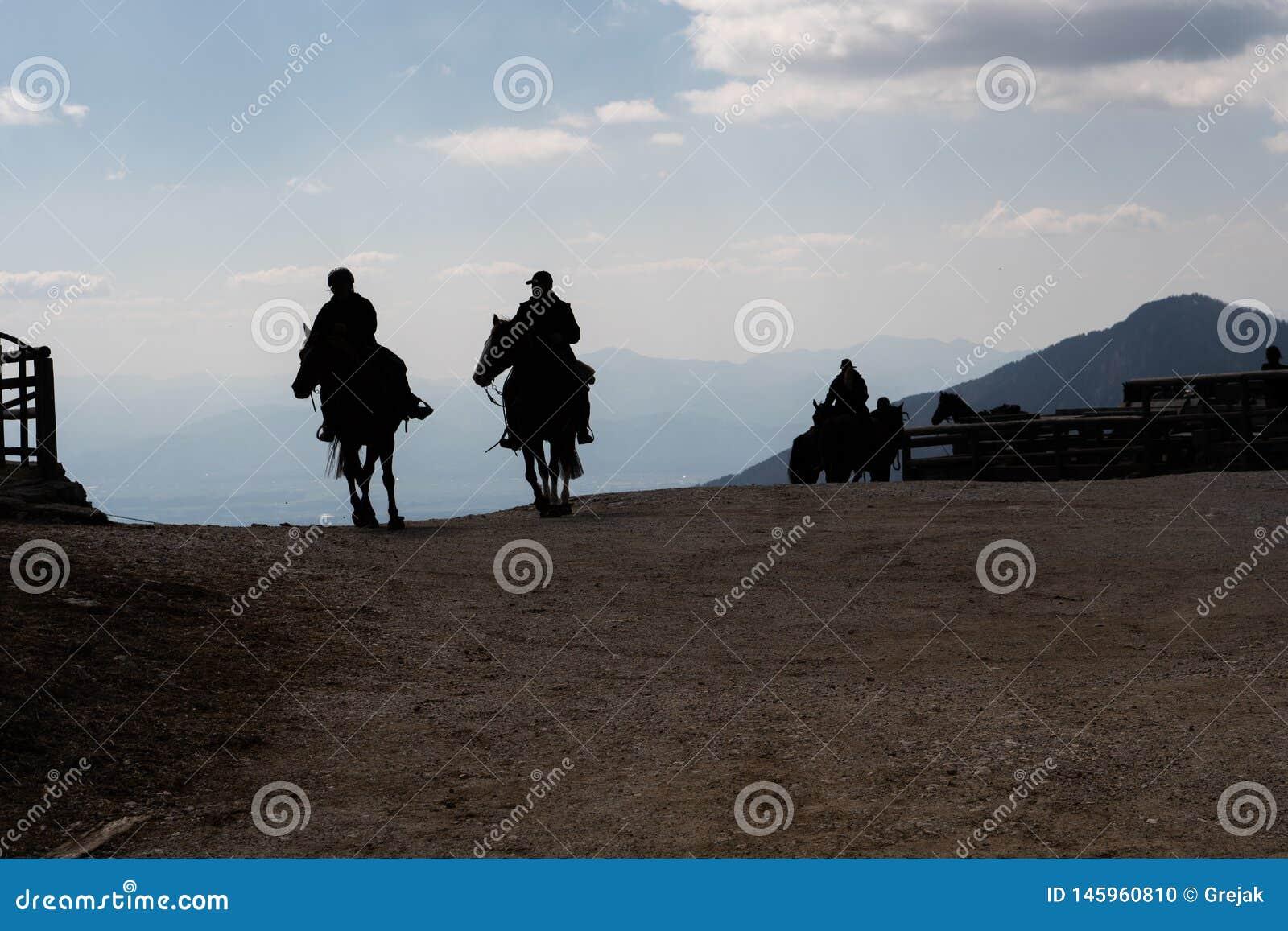 Silhouette des cowboys montant un cheval le soir