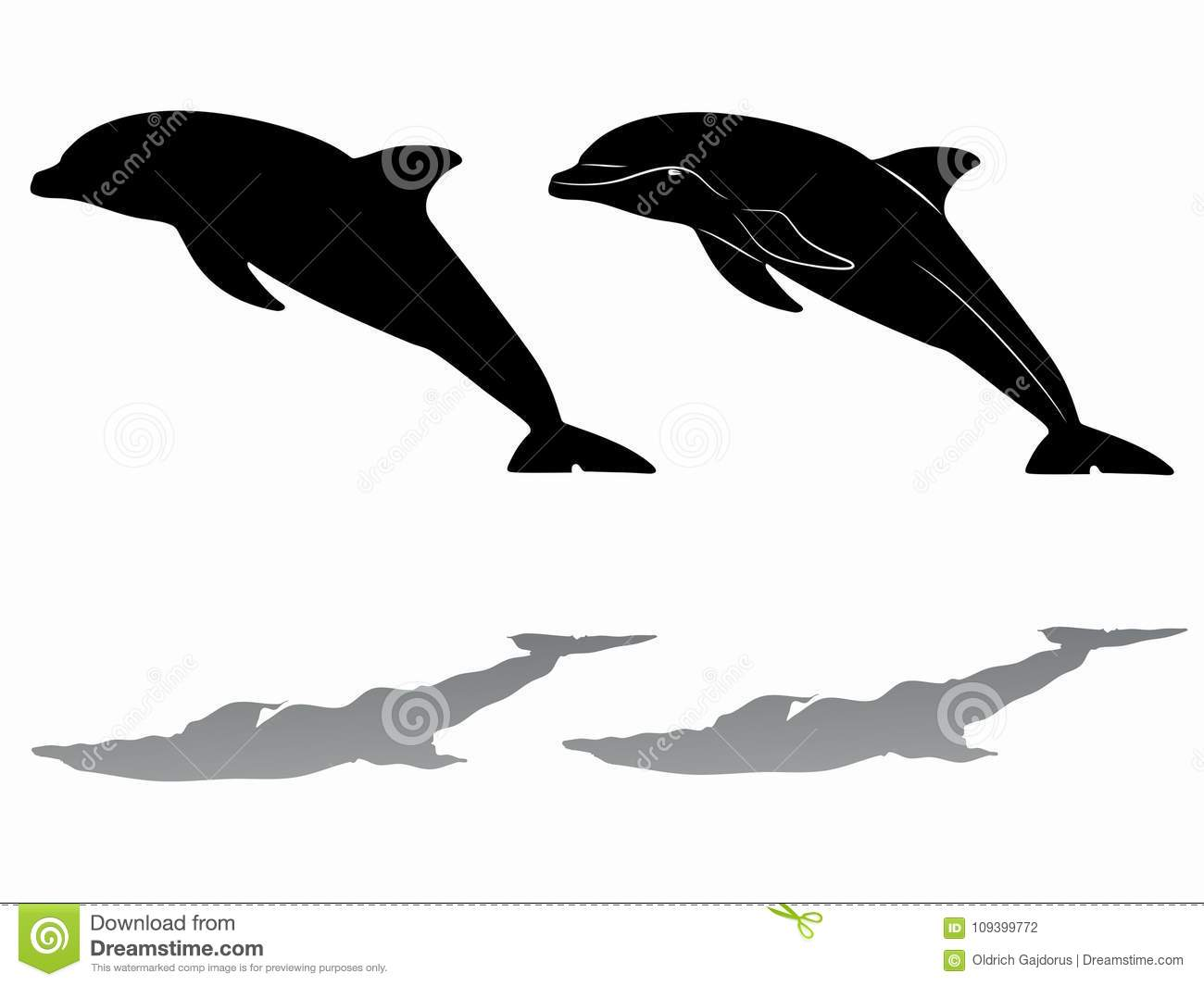 silhouette dolphin vector draw stock vector illustration of