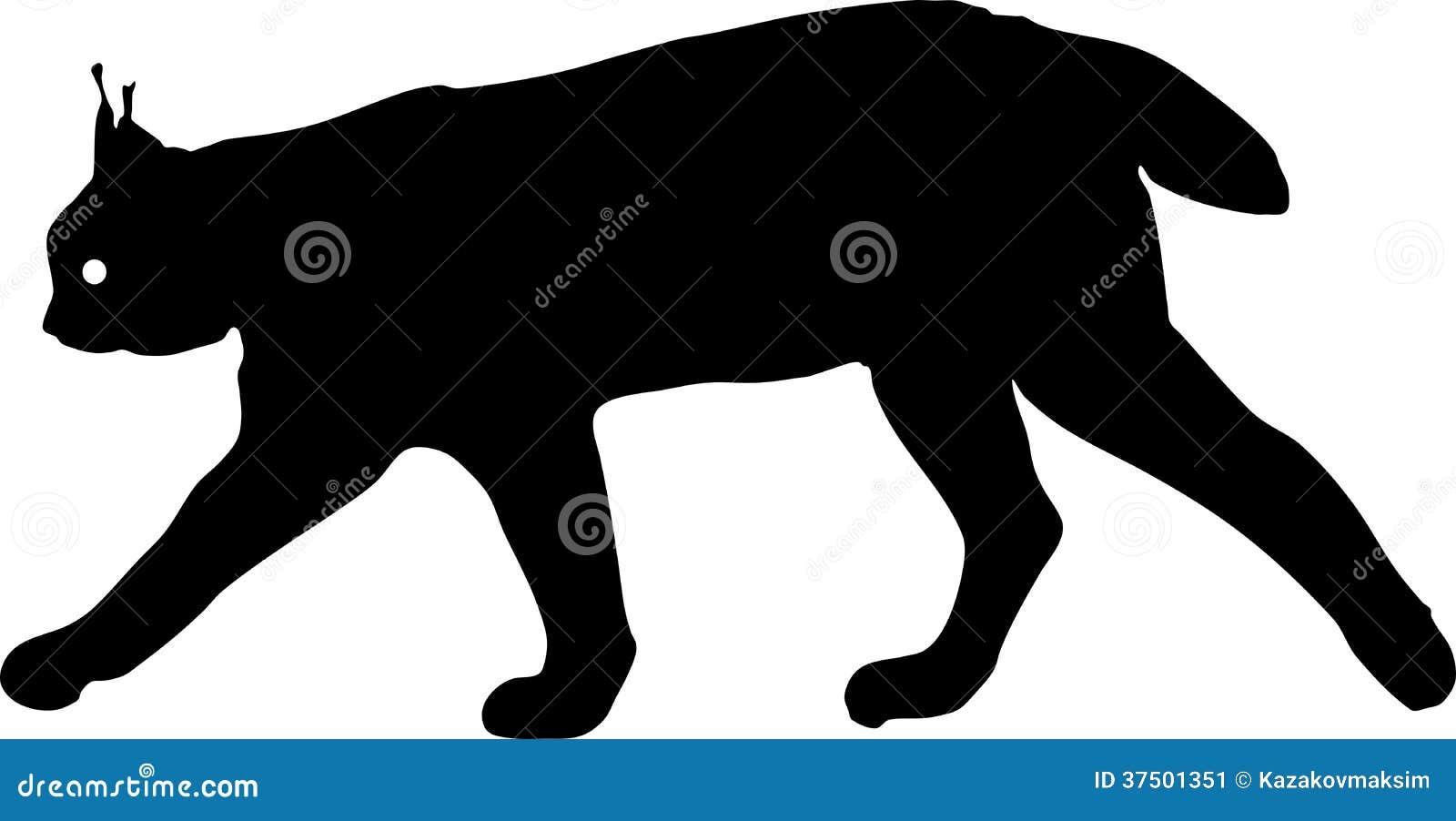 silhouette of eurasian lynx stock vector illustration of eurasian
