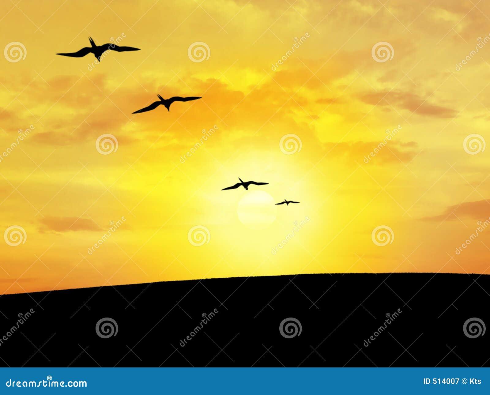 Silhouette för fågel s