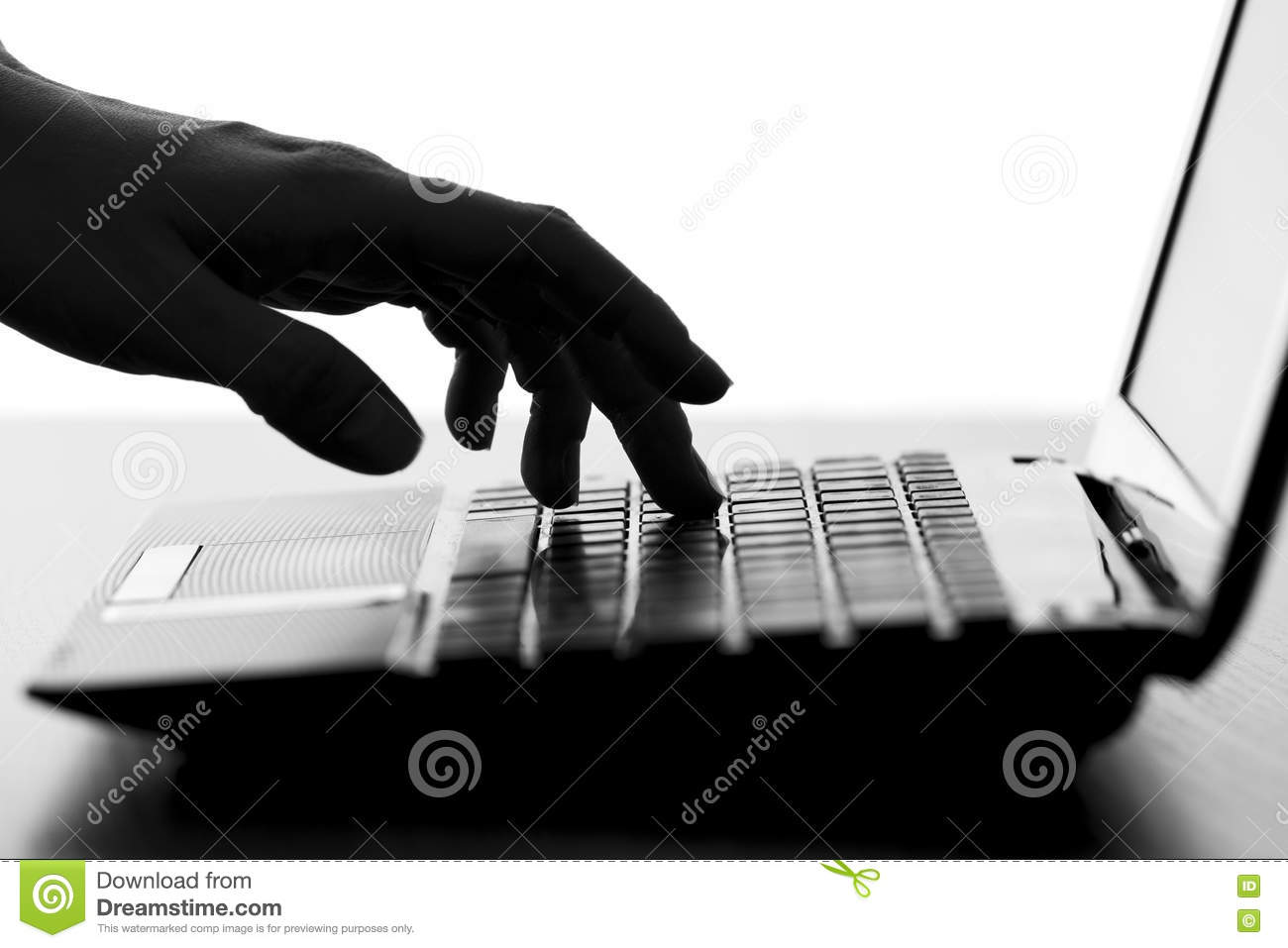 Silhouette of a female hands typing on the keyboard of the netbook