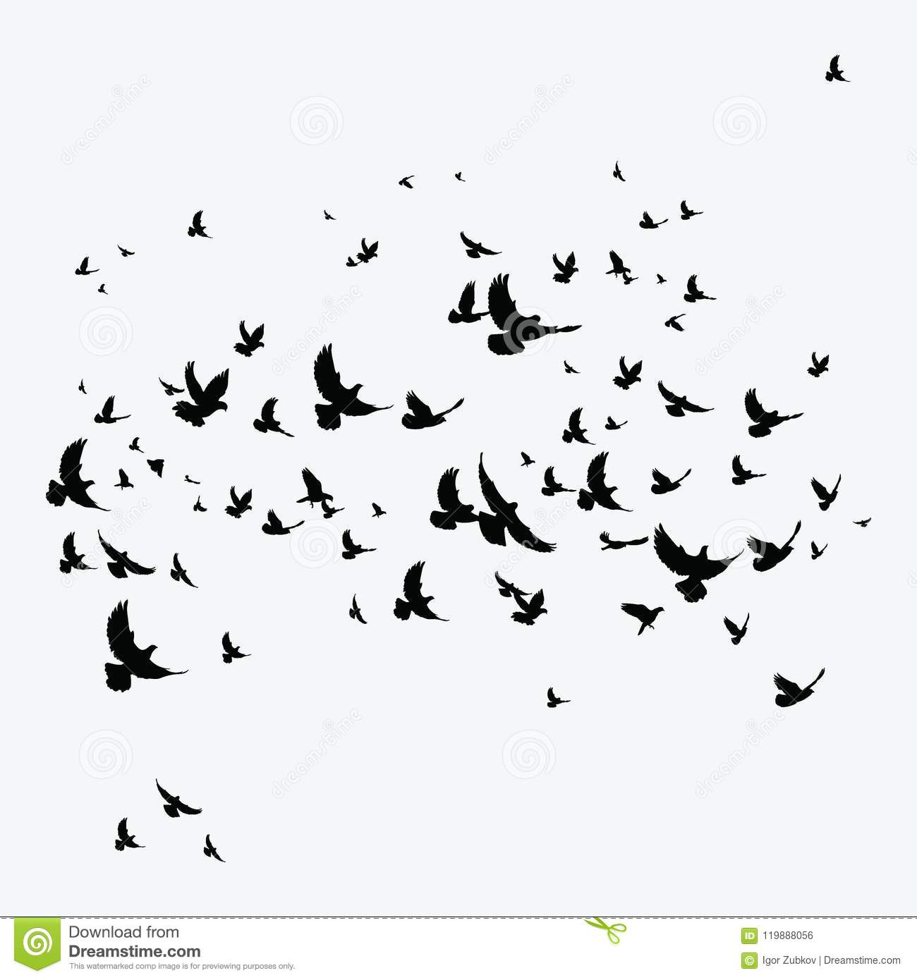 Silhouette Of A Flock Of Birds. Black Contours Of Flying