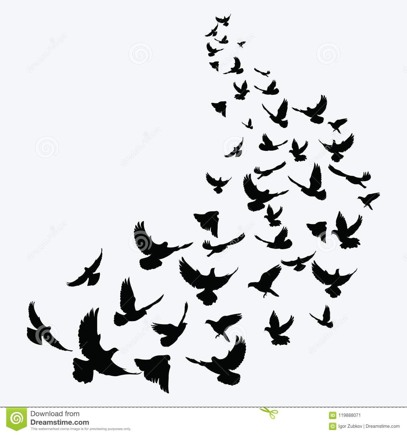 Good information flying bird clip art black and white business!